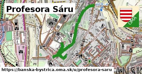 ilustračný obrázok k Profesora Sáru, Banská Bystrica