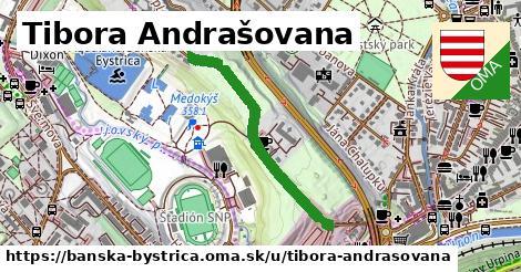 ilustračný obrázok k Tibora Andrašovana, Banská Bystrica