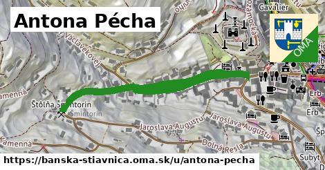 ilustračný obrázok k Antona Pécha, Banská Štiavnica