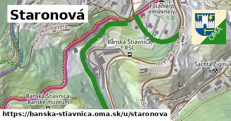 ilustračný obrázok k Staronová, Banská Štiavnica