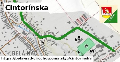 ilustrácia k Cintorínska, Belá nad Cirochou - 0,83km