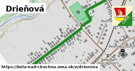 ilustrácia k Drieňová, Belá nad Cirochou - 672m
