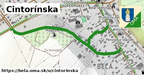 ilustrácia k Cintorínska, Belá - 0,78km