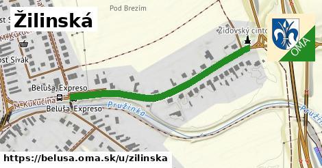 ilustrácia k Žilinská, Beluša - 580m