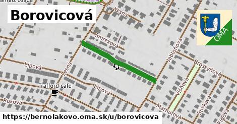 ilustrácia k Borovicová, Bernolákovo - 265m