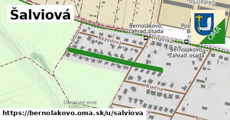 ilustrácia k Šalviová, Bernolákovo - 314m