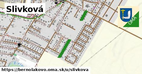 ilustrácia k Slivková, Bernolákovo - 344m