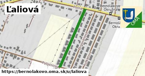 ilustrácia k Ľaliová, Bernolákovo - 326m