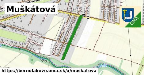 ilustrácia k Muškátová, Bernolákovo - 493m