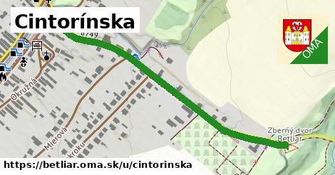 ilustrácia k Cintorínska, Betliar - 0,71km