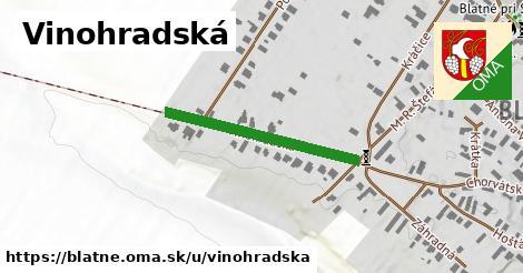 ilustrácia k Vinohradská, Blatné - 262m