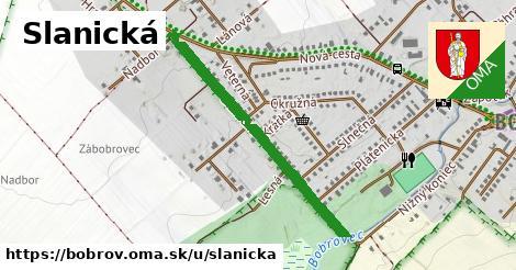 ilustrácia k Slanická, Bobrov - 0,76km