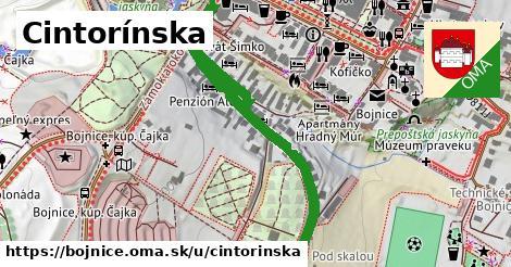 ilustrácia k Cintorínska, Bojnice - 666m
