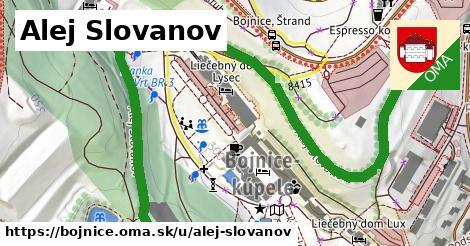 Alej Slovanov, Bojnice