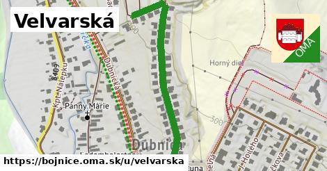 ilustrácia k Velvárska, Bojnice - 549m