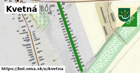 ilustrácia k Kvetná, Boľ - 394m