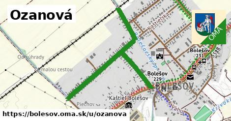 ilustrácia k Ozanová, Bolešov - 1,11km