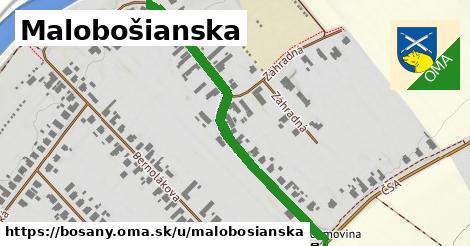 ilustrácia k Malobošianska, Bošany - 632m