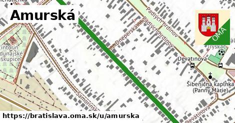 ilustračný obrázok k Amurská, Bratislava