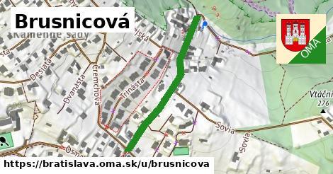 ilustrácia k Brusnicová, Bratislava - 349m