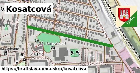 ilustračný obrázok k Kosatcová, Bratislava
