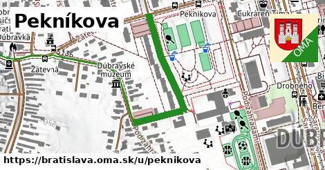 ilustračný obrázok k Pekníkova, Bratislava