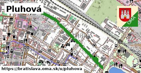 ilustračný obrázok k Pluhová, Bratislava