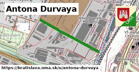 Antona Durvaya, Bratislava