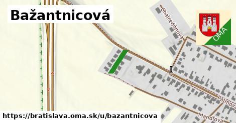 Bažantnicová, Bratislava