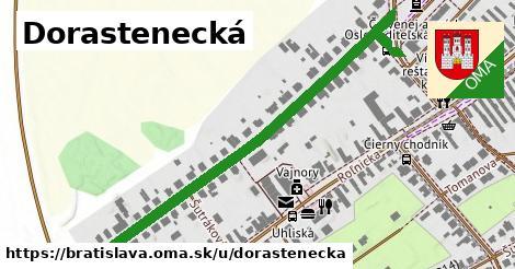 Dorastenecká, Bratislava