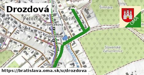 Drozdová, Bratislava