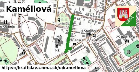 Kaméliová, Bratislava
