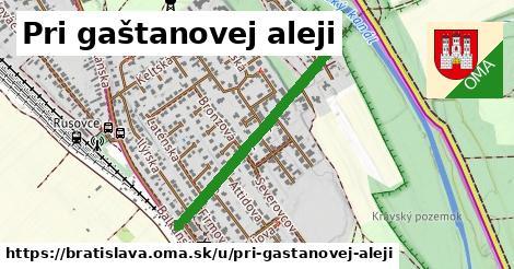 Pri gaštanovej aleji, Bratislava