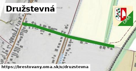 ilustrácia k Družstevná, Brestovany - 0,79km