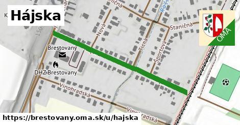 ilustrácia k Hájska, Brestovany - 460m