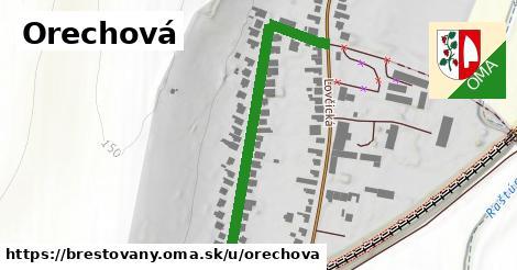 ilustrácia k Orechová, Brestovany - 505m