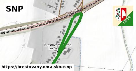 ilustrácia k SNP, Brestovany - 396m