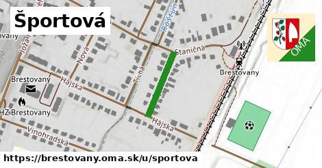 ilustrácia k Športová, Brestovany - 159m