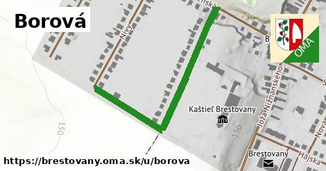 ilustrácia k Borová, Brestovany - 304m