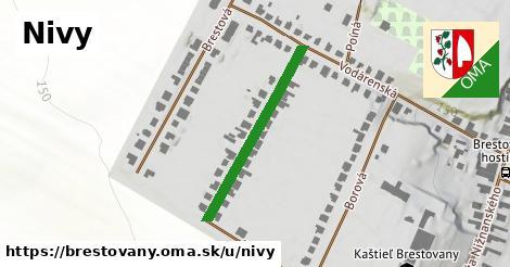 ilustrácia k Nivy, Brestovany - 292m
