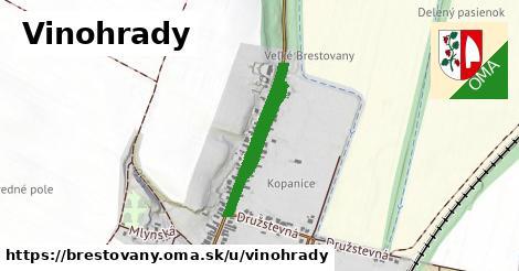 ilustrácia k Vinohrady, Brestovany - 686m