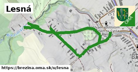 ilustrácia k Lesná, Brezina - 407m