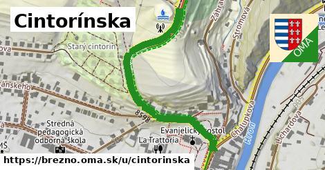 ilustrácia k Cintorínska, Brezno - 507m
