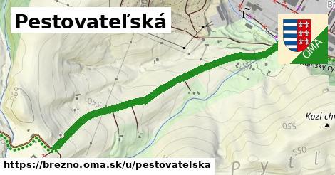 ilustrácia k Pestovateľská, Brezno - 1,16km