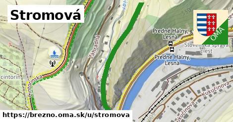 ilustrácia k Stromová, Brezno - 415m