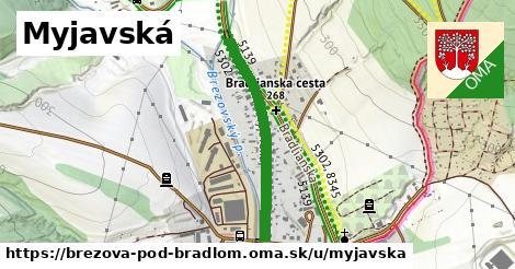 ilustrácia k Myjavská, Brezová pod Bradlom - 606m