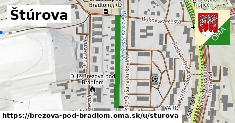 ilustrácia k Štúrova, Brezová pod Bradlom - 457m