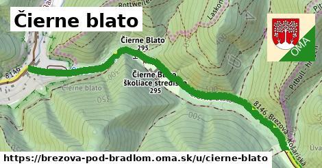 Čierne blato, Brezová pod Bradlom