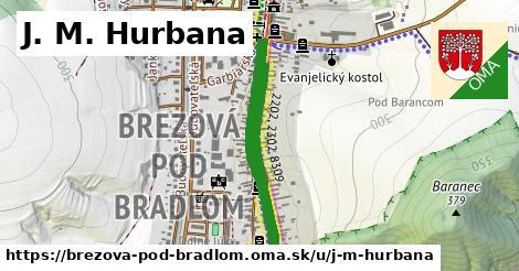 ilustrácia k J. M. Hurbana, Brezová pod Bradlom - 602m