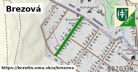 ilustrácia k Brezová, Brzotín - 255m